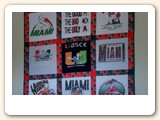 University of Miami t shirt quilt hung with a hang it dang it rod, dang was it easy.